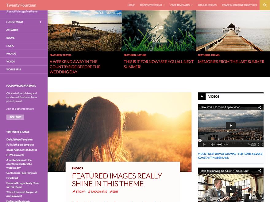 WordPress Theme Anjirai