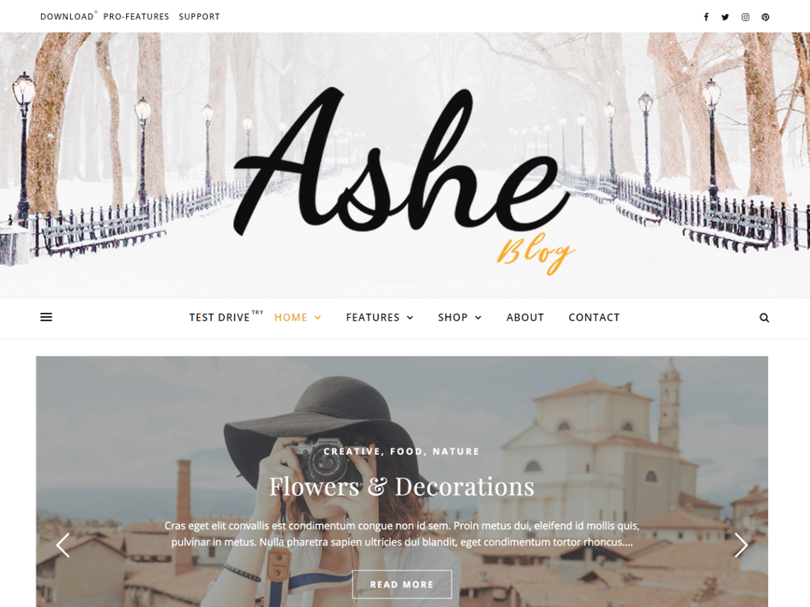 WordPress theme ashe