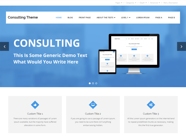 WordPress theme consulting