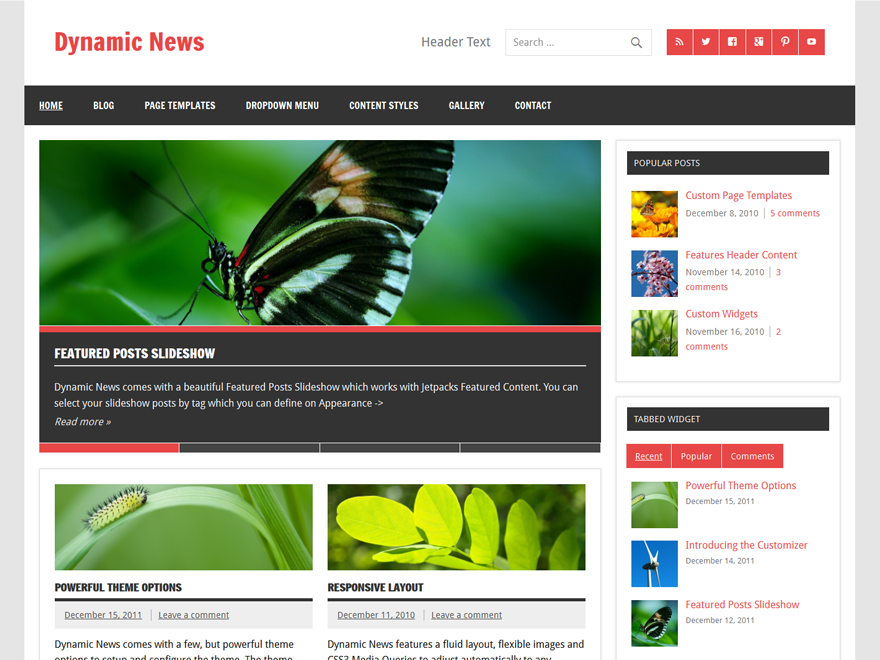 WordPress Theme Dynamic News Lite