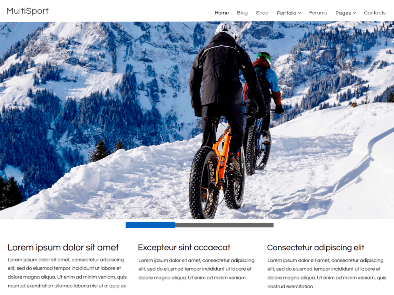 WordPress theme multisport