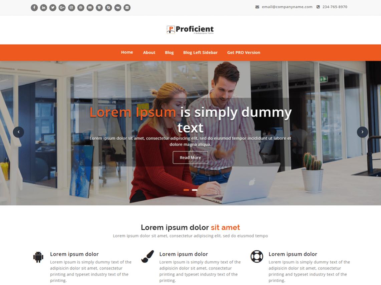 WordPress theme proficient