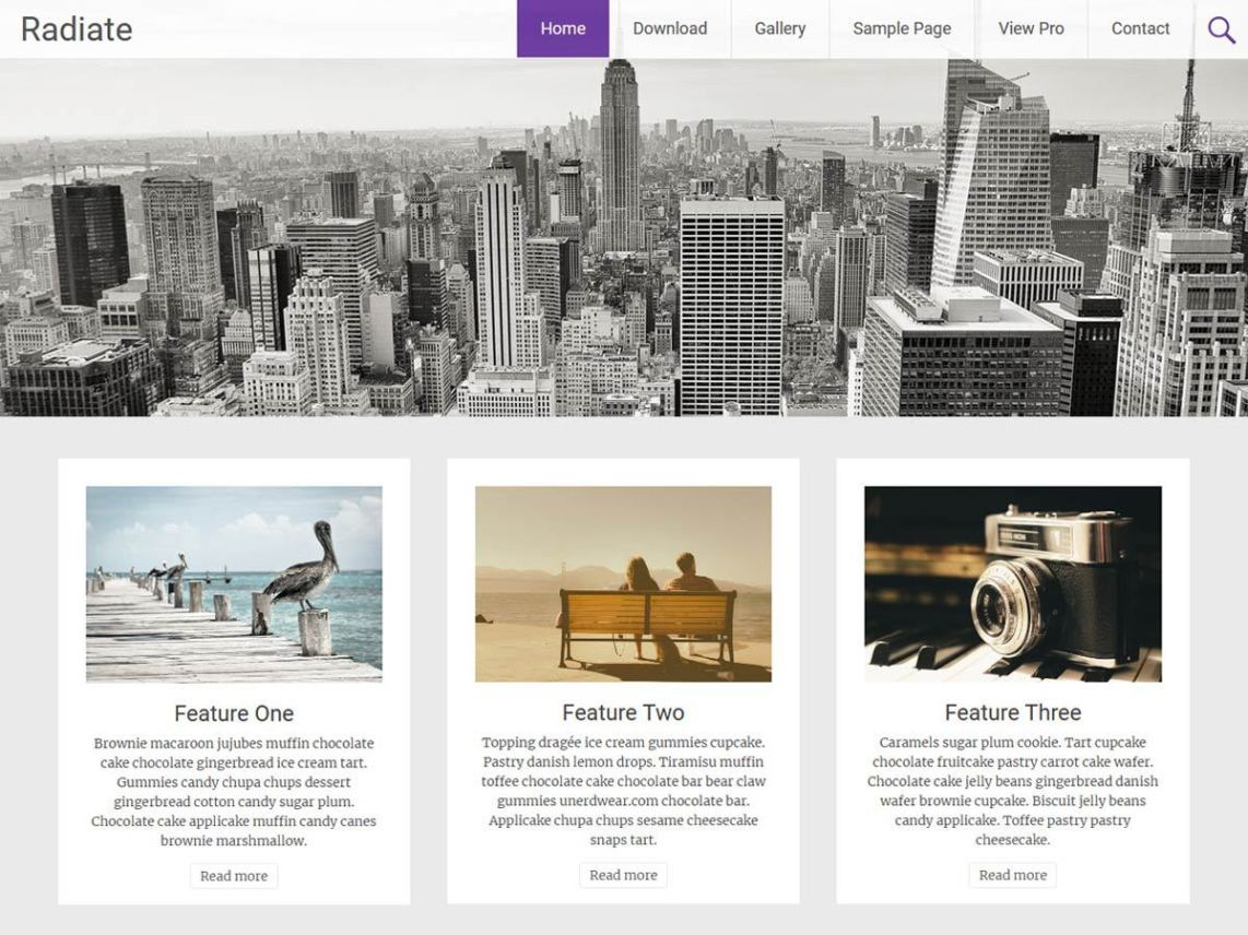 WordPress theme radiate